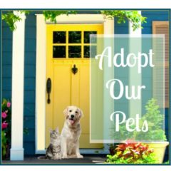 cropped-FB-GPA-Adopt-Our-Pets.jpg