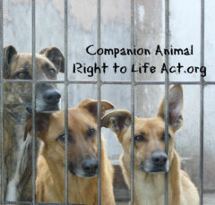 companion animals right to life act Facebook