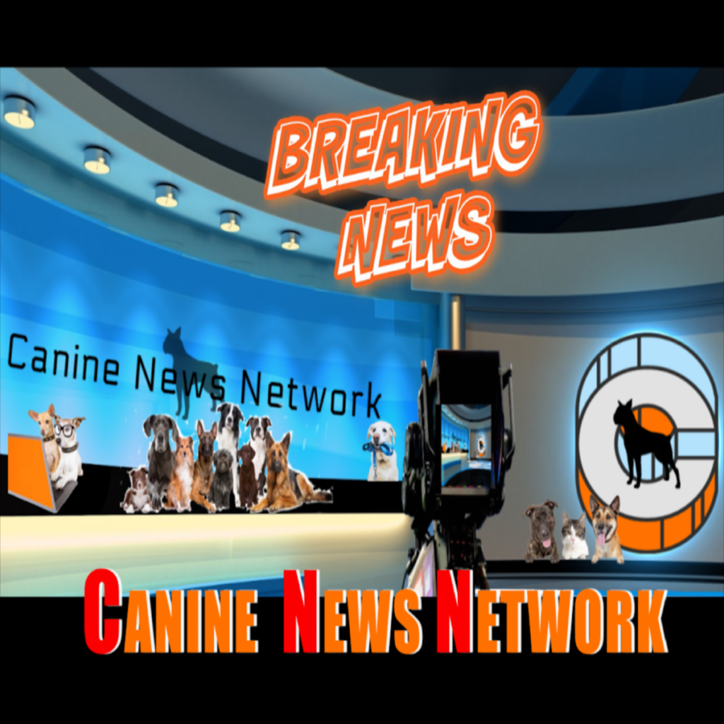 Canine News Network